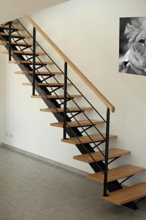 Escalier droit avec limon central métallique